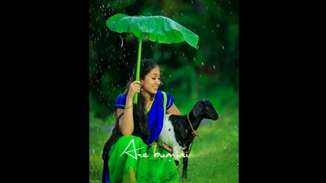 Telugu Old Songs Whatsapp Status Videos Free Download | Instagram Telugu Status Videos Free Download